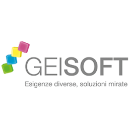 GM Services | Assets | Partner | Geisoft